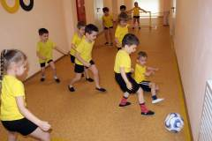 pole-dlja-futbola-hokkeja-volejbola-i-basketbolacentralnyj-holl-2-jetazha